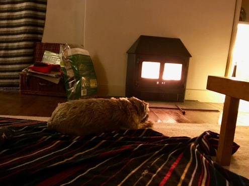 Enjoying the Wood Burner