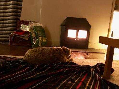 Enjoying the Wood Burner