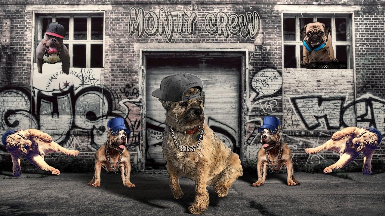monty-crew