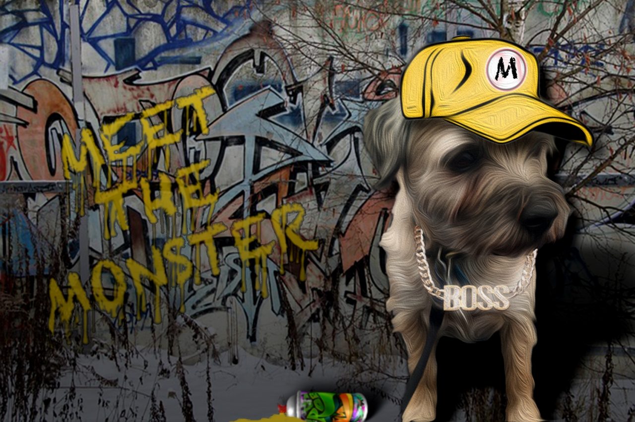 monty-rapper-spray-final
