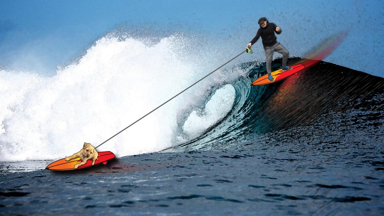 monty-surf-joe